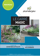 carre-magic.miniature