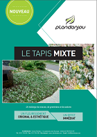 tapis-mixte.miniature