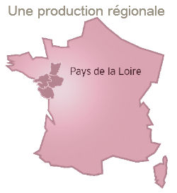 production-regionale-250